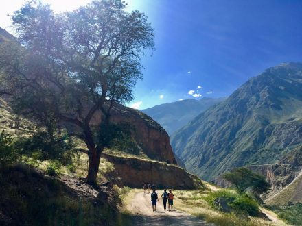 Colca Canyon Hike Green Peru Adventures